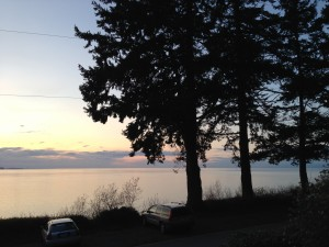 lummi island pacific northwest travel